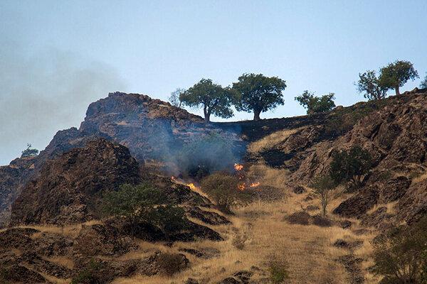 کوشش برای مهار کامل آتش سوزی در کوه سیاه دشتستان ادامه دارد