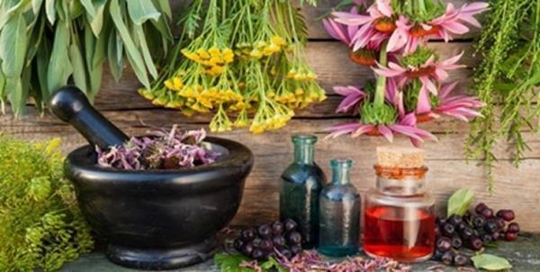 گیاه درمانی چیست؛ پیشگیری از بیماری با عصاره هایی شفابخش